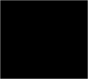 NFI_small_logo